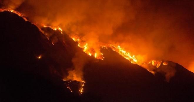 California'daki yangın nedeniyle 37 bin kişi tahliye edildi