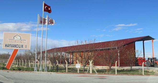 Konya'da 'sütbank' soruşturması başlatıldı