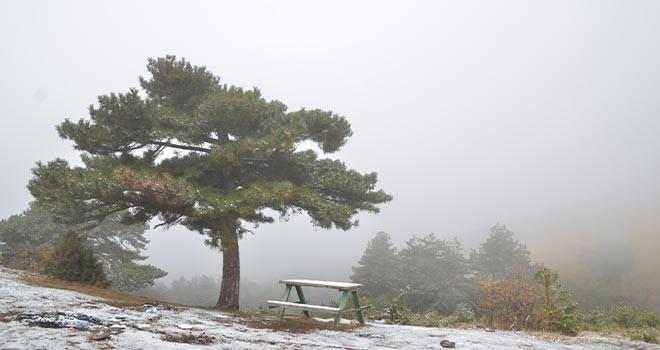 Kar yağışı ve sis sonbahar renkleriyle güzel görüntüler oluşturdu