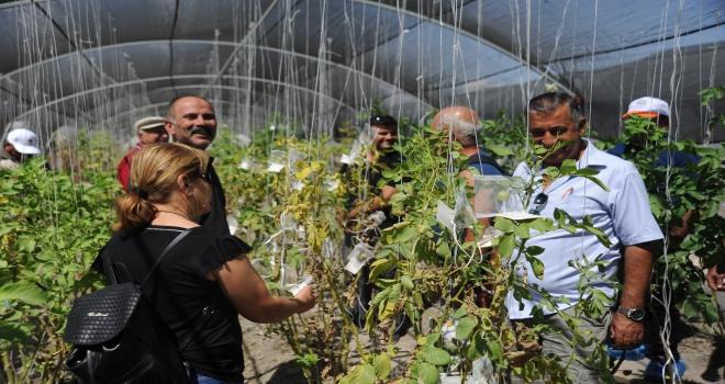 KKTCli üreticilerden patates enstitüsüne ziyaret