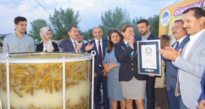 Çubuk turşusu Guinness Dünya Rekorlar Kitabında