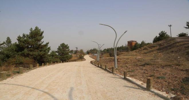 Aydın, Kardeşler Mesire Alanı ve Macera Parkını inceledi