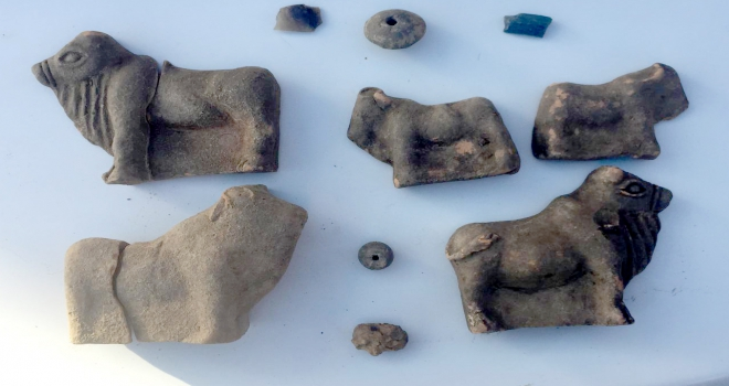 Sivasta tarihi eser kaçakçılığı