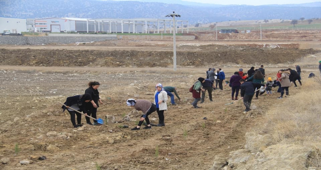 Beyşehir OSBde fidan dikme etkinliği