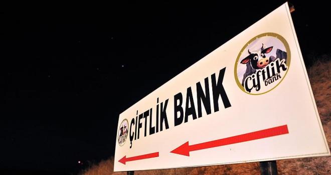 Çiftlik Bankın sosyal medya sorumlusu yakalandı