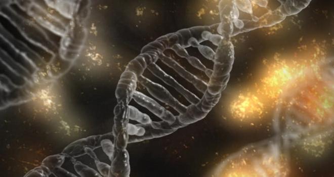 Genetik hastalıkları düzeltebilmek artık hayal olmanın ötesinde