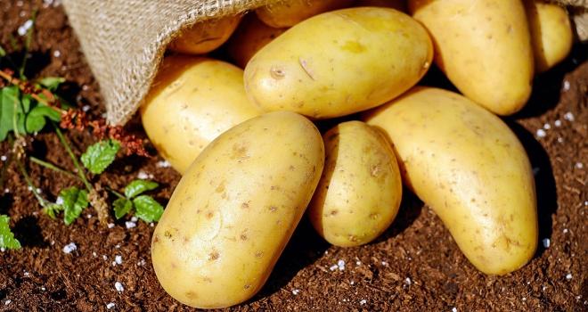 Patates ithalatında gümrük vergisi sıfırlandı