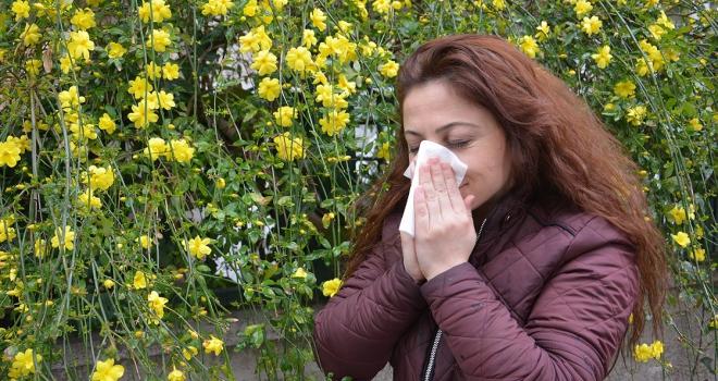 Meteoroloji polen tahmininde de bulunacak