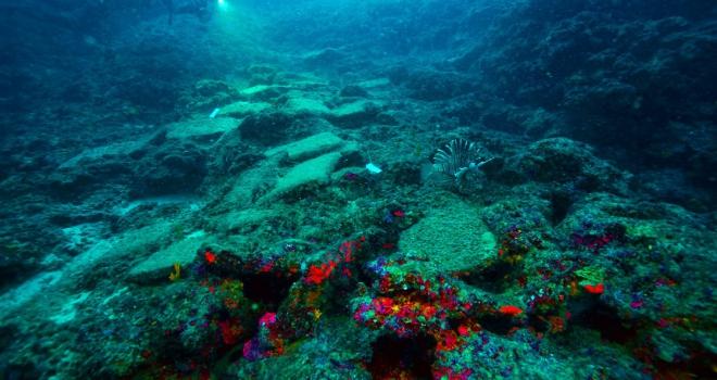 Türkiyede bulunan dünyanın en eski gemi batığı UNESCOda tanıtıldı