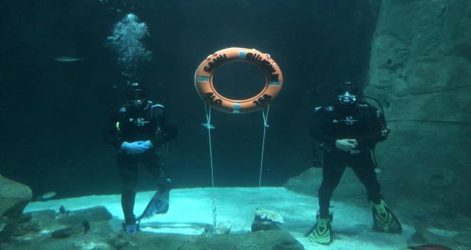 Sahil Güvenlik Komutanlığıİstanbul Akvaryum iş birliği