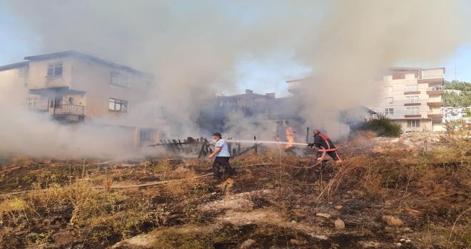 Başkentte otlukta alandaki yangın evlere sıçradı
