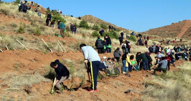 11 Milyon Ağaç; Bugün Fidan, Yarın Nefes programı