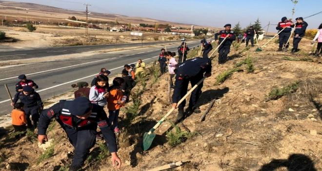 Jandarma ekipleri öğrencilerle fidan dikti