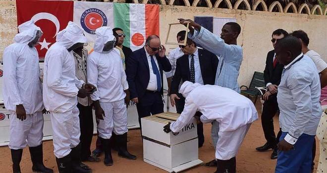 TİKA'dan Nijer'e arıcılık eğitimi ve ekipman desteği