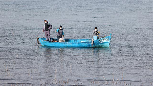 Göl kıyısında sinekle mücadele