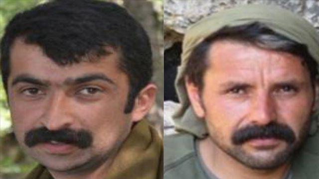 Mardin'de 'kırmızı' ve 'turuncu' kategoride iki terörist etkisiz hale getirildi