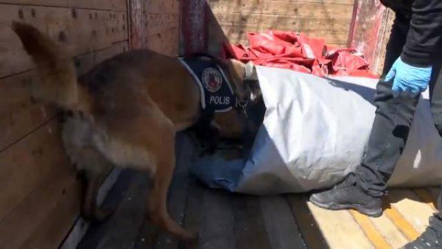 TIR'da 32 kilo esrar yakalandı