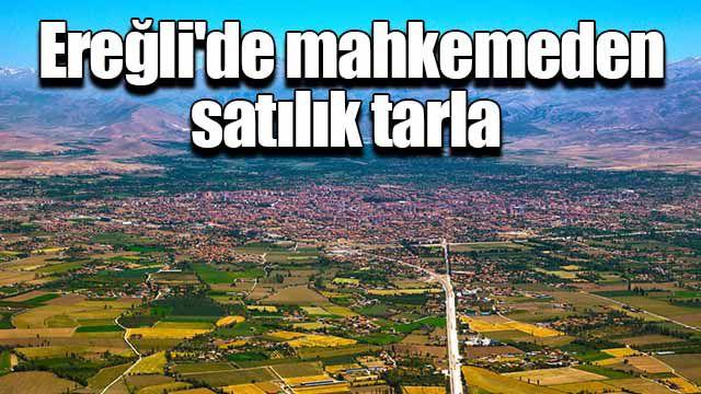 Ereğli'de mahkemeden satılık tarla