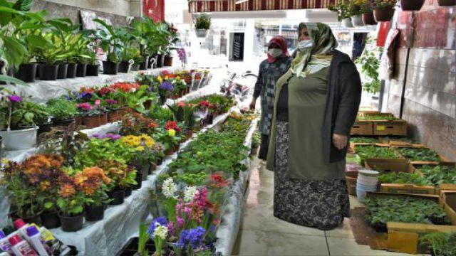 Pandemi hobisi; çiçek yetiştiriciliği