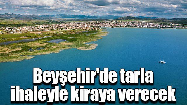 Beyşehir'de tarla ihaleyle kiraya verecek