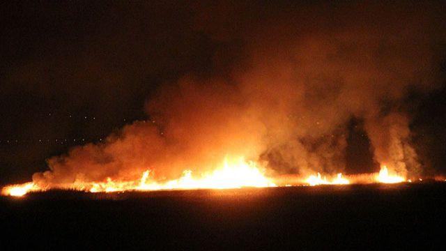 Erzincan'da kuş cenneti alev alev yanıyor