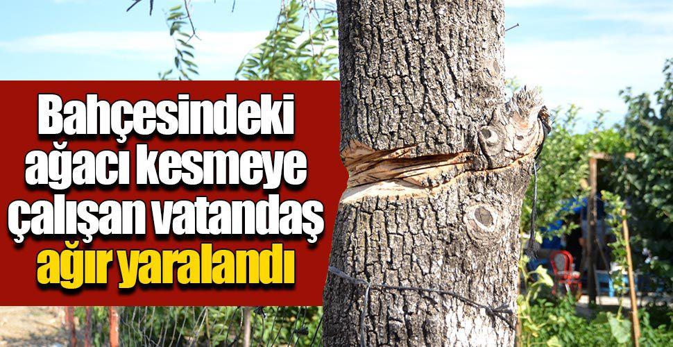 Bahçesindeki ağacı kesmeye çalışan vatandaş boynundan yaralandı