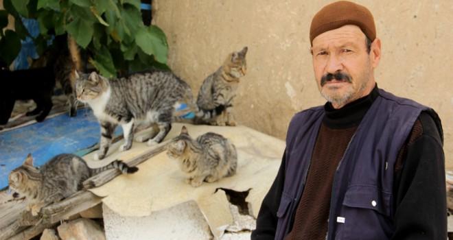 Hurda parasıyla hem eşinehem de kedilere bakıyor