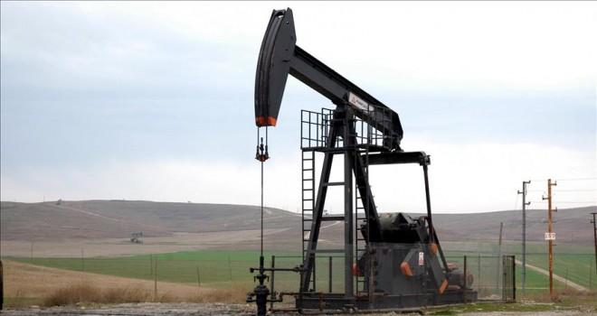 Yüksek petrol fiyatları arama-üretim faaliyetlerine canlılık getirdi