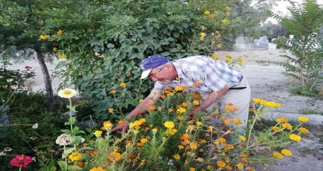 Oğlunun mezarını çiçeklerle donattı