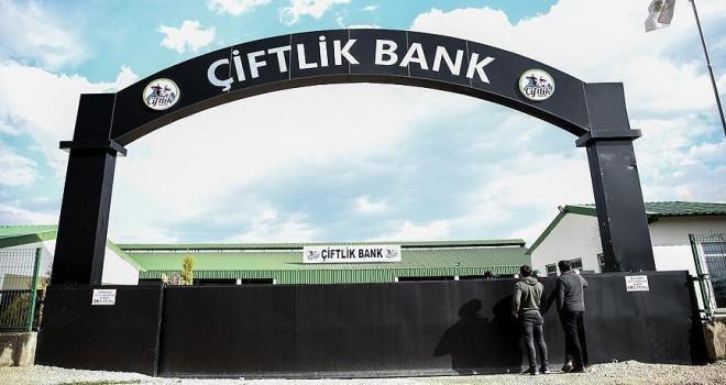 Sakarya merkezli 7 ildeki 'Çiftlik Bank' soruşturmasında 4 kişi tutuklandı
