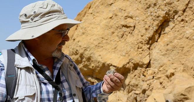 Türkiye'de ilk kez 'doğal kehribar' tespit edilen saha inceleniyor