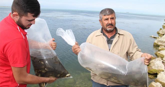 Beyşehir Gölü'nesazan takviyesi