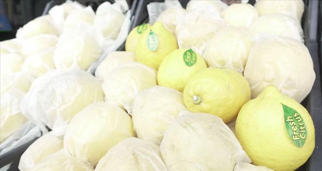 Rusya'ya ihracata domates mandarin ve limon katkısı