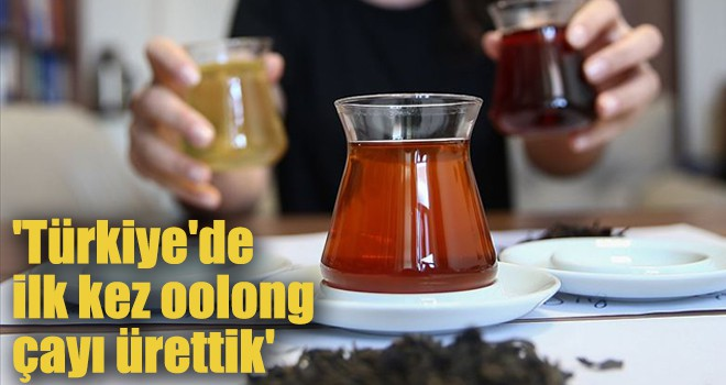'Türkiye'de ilk kez oolong çayı ürettik'