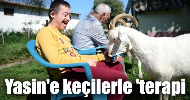Yasin'e keçilerle 'terapi