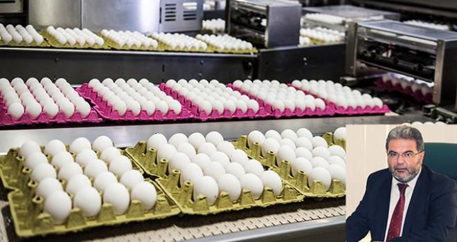 Numarasız yumurtasatanlara büyük ceza