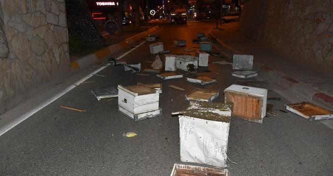 Kamyonun kasası köprüye takıldı, arı kovanları yola saçıldı