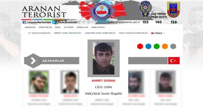 Gri listede aranan PKK'lı terörist etkisiz hale getirildi