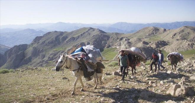 Göçerlerin atlarla zorlu yayla yolculuğu