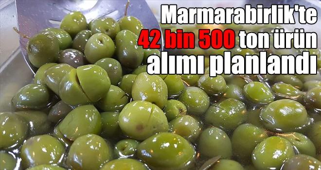 Marmarabirlik'te 42 bin 500 ton ürün alımı planlandı