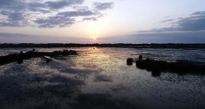 Kızılırmak Deltası Kuş Cenneti UNESCO yolunda